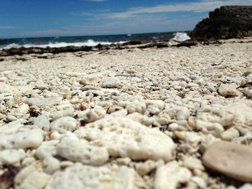 Cozumel pebbles