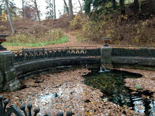 NY Spring Water